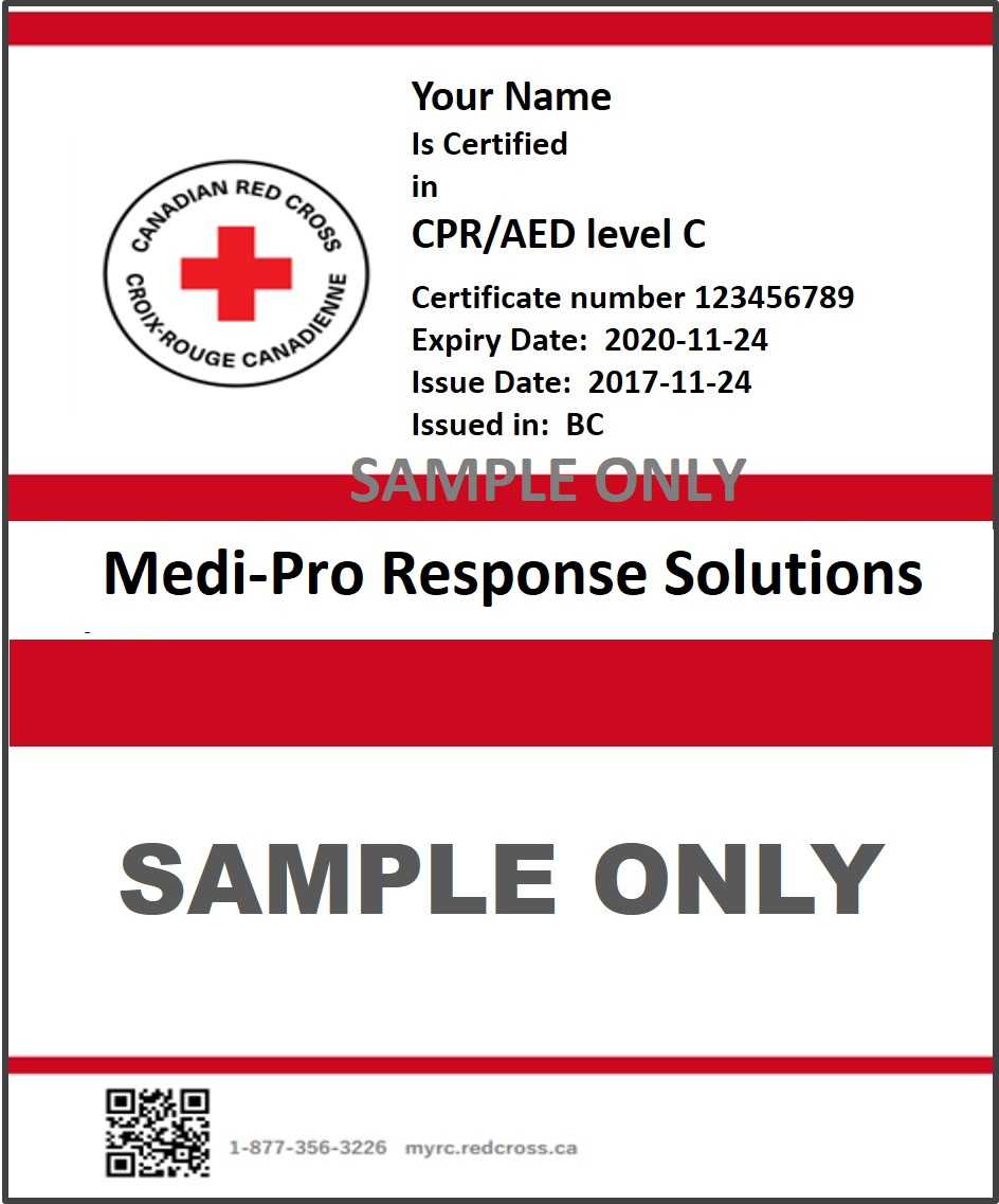 Cpr C Courses In Kelowna Bc Kelowna First Aid Cpr Courses